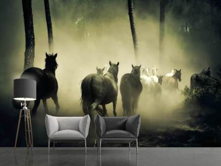 Photo Wallpaper Horses in the forest