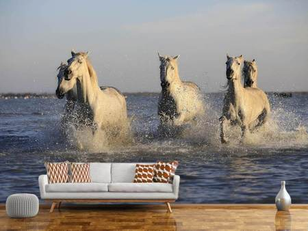 Photo Wallpaper Horses in the sea
