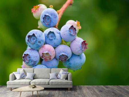 Photo Wallpaper Blueberries in nature