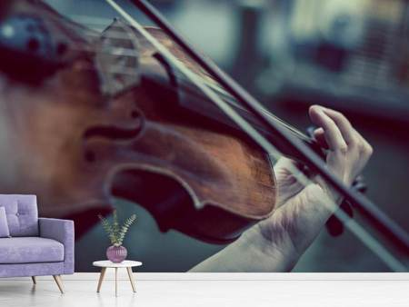 Photo Wallpaper violin