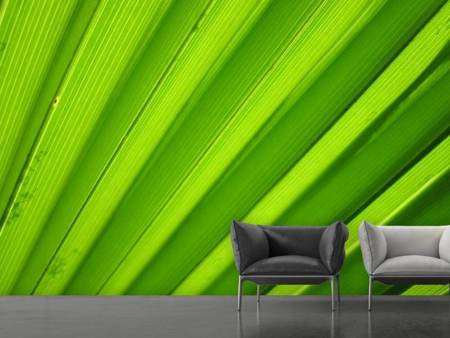 Photo Wallpaper Palm stripes 2