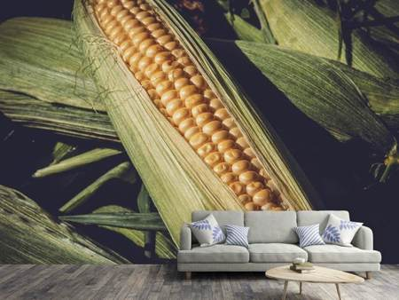Photo Wallpaper Fresh sweetcorn