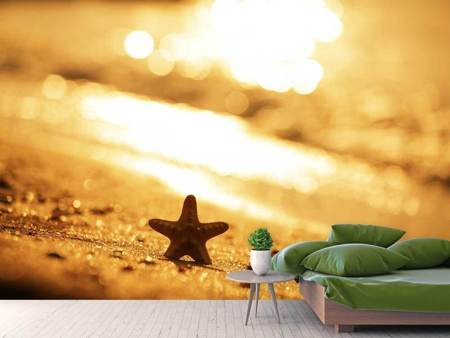 Photo Wallpaper The Starfish