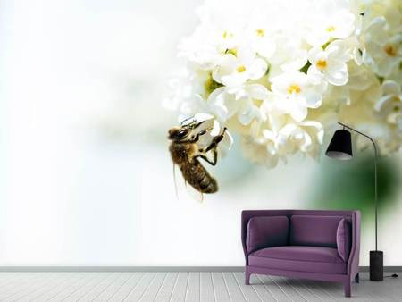 Photo Wallpaper The Bumblebee And The Flower