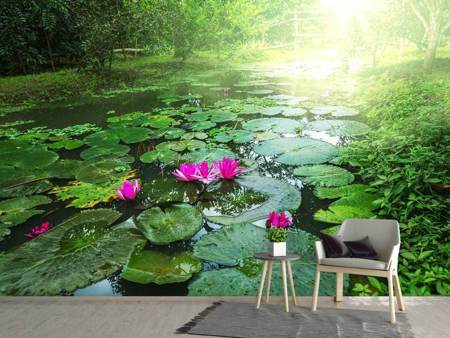 Photo Wallpaper Garden Pond